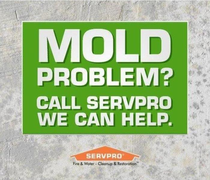 Mold Remediation How Mold Can Slip Into a Residence Unnoticed