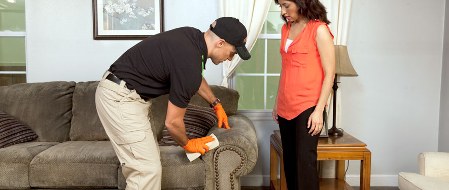 Lawrence, KS carpet upholstery cleaning